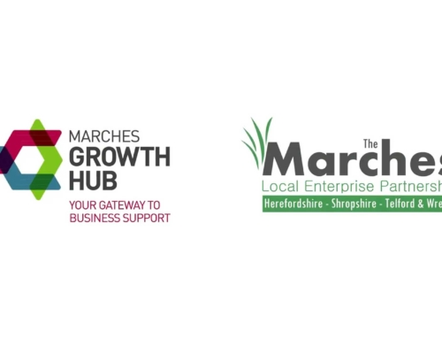 Marches Growth Hub – Apprentices