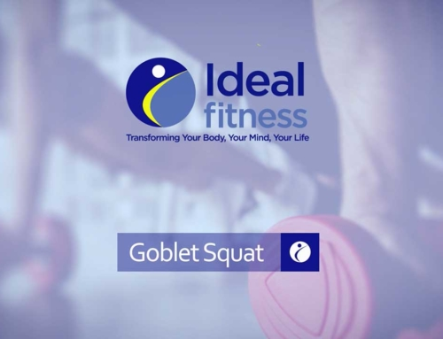 Ideal Fitness – Exercise Example